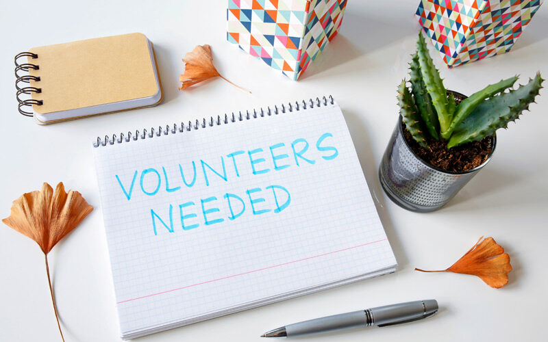 How Room Parents Can Ask for Volunteers (Free Template)